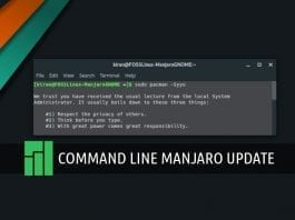 Update manjaro using command line