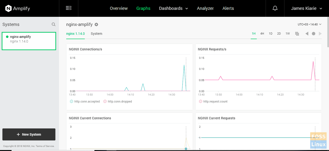 Nginx-amplify graphs